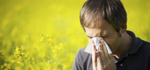 4 Foods To Bust Spring Time Allergies