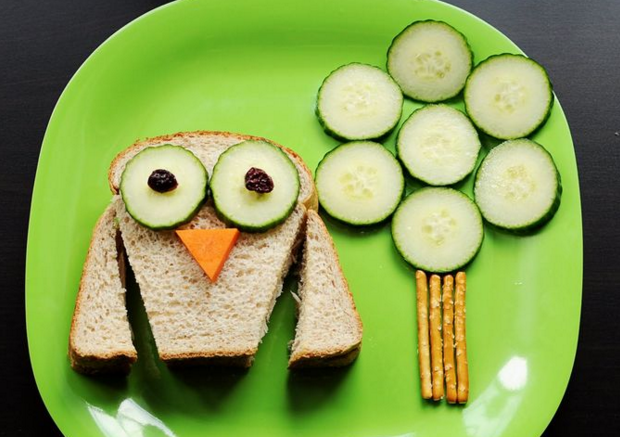 Owl Sandwich and A Cucumber Tree