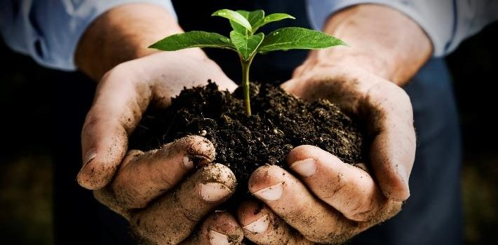 4 Reasons Gardening Completes Your Life