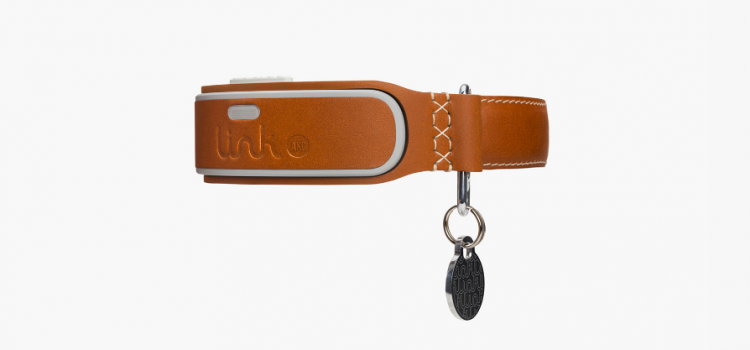 Link AKC Doggy Wearable Looks Out for Your Pup Like a Boss