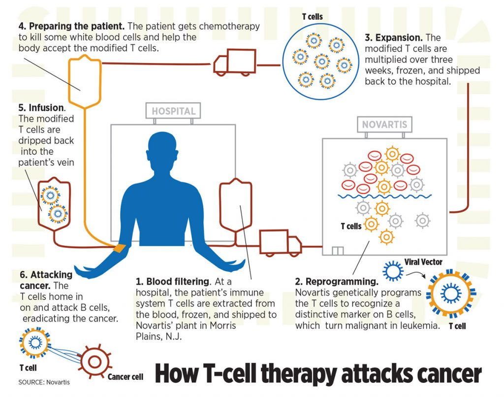 Now We Can Program Blood Cells to Attack Cancer; Next?